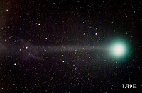 Lovejoy_180_02_web2